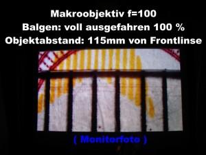f_100_Balg_100_t