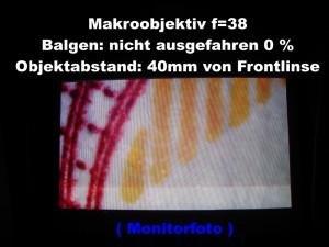 f_38_Balg_0_t