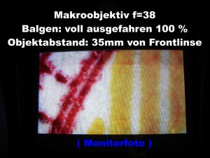 f_38_Balg_100_t