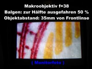 f_38_Balg_50_t